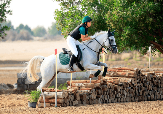 Horse Riding Private Lessons