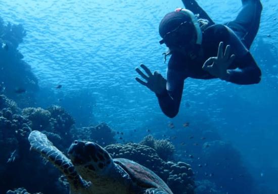 SDI Open Water Diving