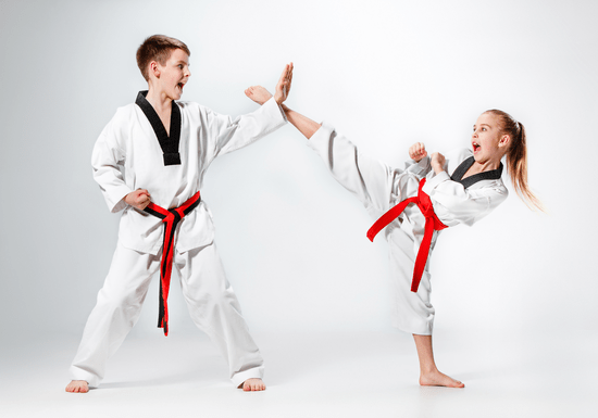 Intermediate Karate Lessons for Kids - Ages: 3-16