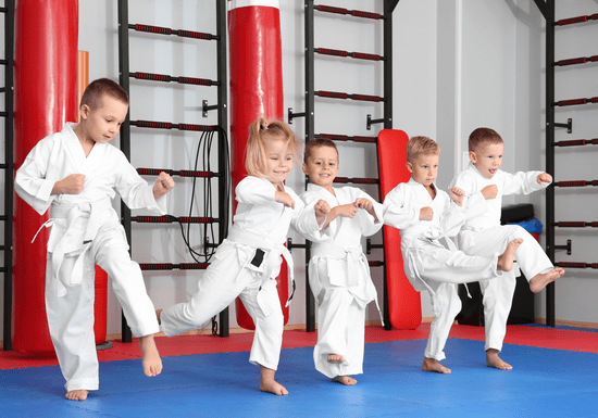 Beginner Karate Lessons for Kids - Ages: 3-16