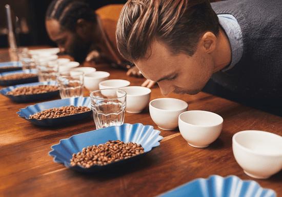 Barista 101: Coffee Tasting & Cupping