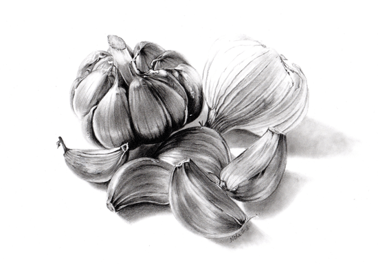 Online Class: Graphite & Charcoal Drawing