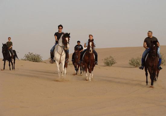 Desert Horse Riding