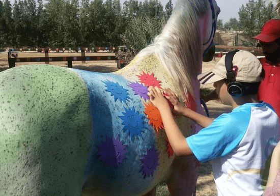 Horse Riding - Rehab & Training For Special Needs - Ages: 6+