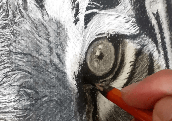 Online Class: Charcoal Drawing with Mustafa