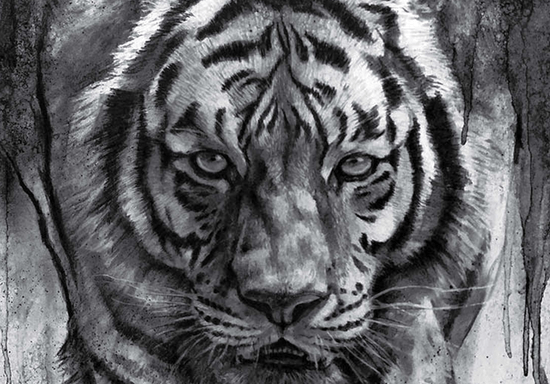 Realistic Drawing & Sketching with Charcoal