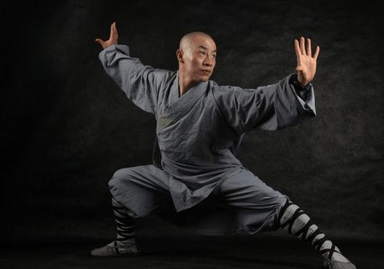 Learn Kung Fu! (MBZ)
