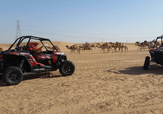 Dune Buggy - Evening Adventure with Traditional Emirati Dinner