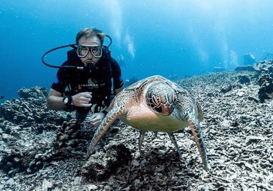 PADI/ NAUI Open Water Scuba Diving Course (Dubai)