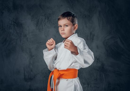 Kyokushin Karate (IKO) for Kids - Ages: 5-13