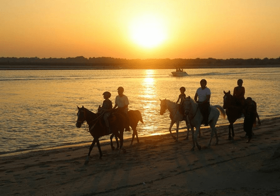 Horse Riding Nights & BBQ by the Beach