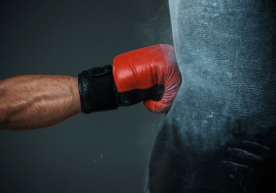 Boxing with a Personal Trainer (The Palm)