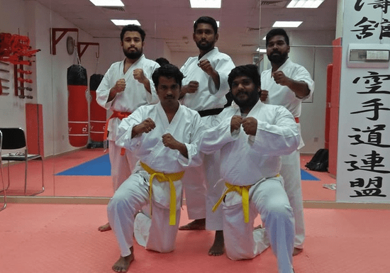 Karate Group Lessons (Beginner to Advanced)