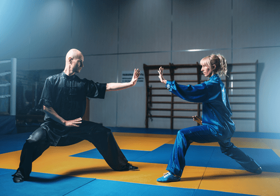 Private Kung Fu Training