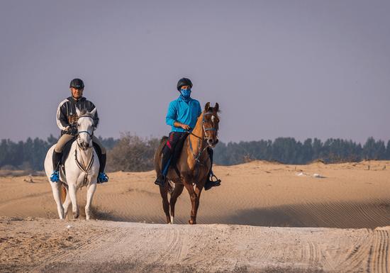 Desert Horse Riding Lessons