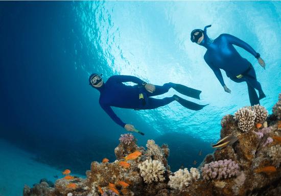 PADI Freediver Course (Level 1)