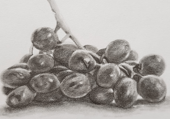 Online Class: Basics of Pencil Shading - Ages: 12+