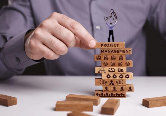 Project Management (PMP) Training Program